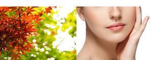 秋が旬のサーモンです。DHAやEPAというオメガ3系の良質な油が含まれており、血液をサラサラにして肌のツヤもよくするのに役立ちます。