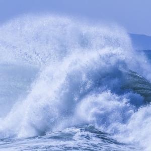 【台風シーズン本格到来】台風の備えで、今売れている防災グッズ
