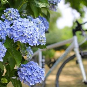【雨の日】保育所&幼稚園への自転車の送迎は交通ルールを守って安全第一に!