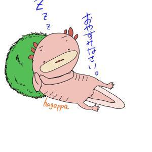 おやすみー