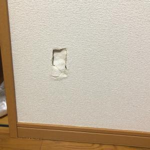壁穴修理専門店