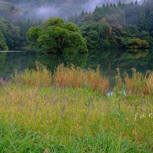 秋の装い-蛇ヶ池-