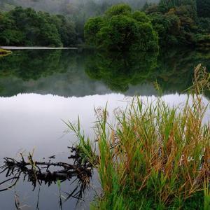 秋の装い-蛇ヶ池-2