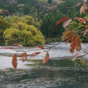 色づく蛇ヶ池