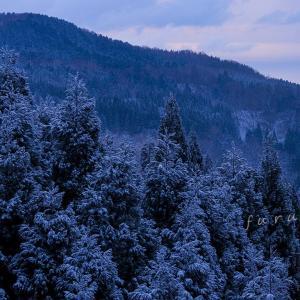 ふんわりと雪