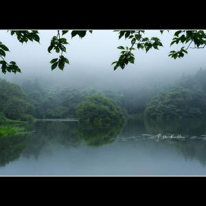 雨に咽ぶ蛇ヶ池