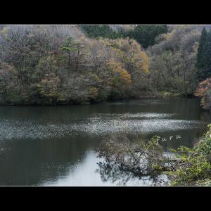晩秋のため池