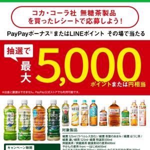"""""""PayPay500円当たり!"""""""