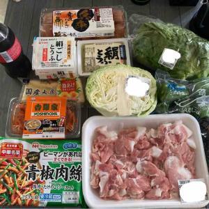 【食材購入記録】7月13日~7月19日【反省とまとめ】