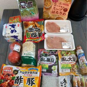 【食材購入記録】食費節約とダイエットは両立できるのか?