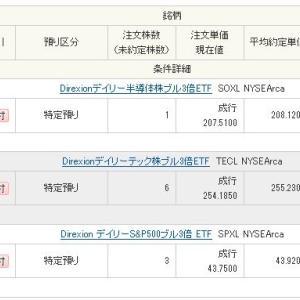 夏ボーナス20万円全額をTECLやSOXL等フルでレバレッジETFにぶち込みました