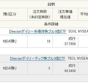TECLとSOXLを10万円分雑に買付けしました。