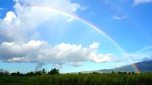 祝福の虹。