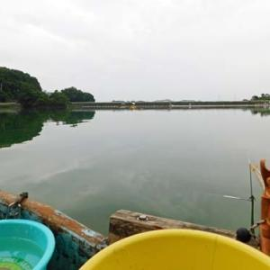 7月11日、鮎川湖。