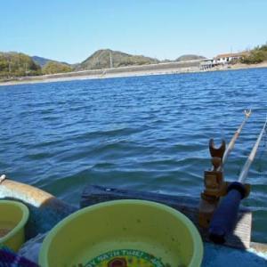 今年初の釣行、鮎川湖。