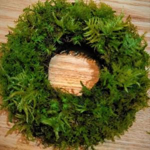 苔で作ったクリスマスリース