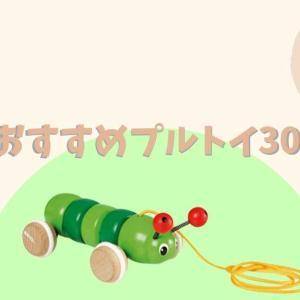 【おすすめ30選】引っ張るおもちゃ!その名もプルトイを徹底紹介
