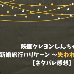 映画クレヨンしんちゃん 新婚旅行ハリケーン 失われたひろしの感想【配信・レンタル情報】
