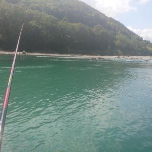 四万十川の鮎釣り
