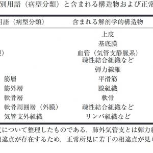 気管支鏡所見分類の改訂