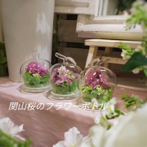 フラワーボトルのレッスン関山桜