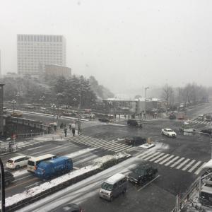 四谷に雪が積もり始めました!