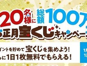 i2iポイント ~総額100万円の宝くじ~