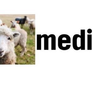 ライフメディア 登録方法
