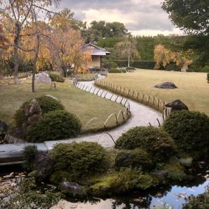 京都観光、さらに続きです