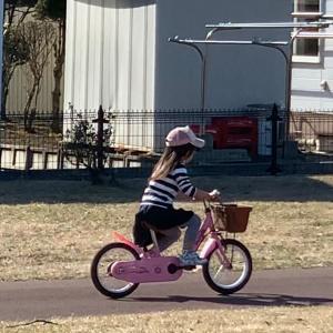 【自転車】ミツコシ