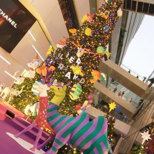 クリスマスシーズンがやってくる!!