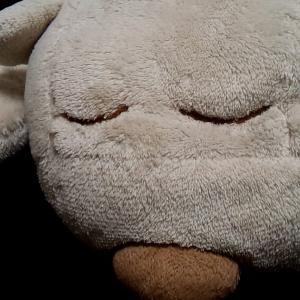 10年以上使っているニトリのシロクマ 綿が切れたので、綿を詰める