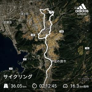 サイクリング(大仁)