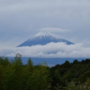 今日の富士山(笠雲)