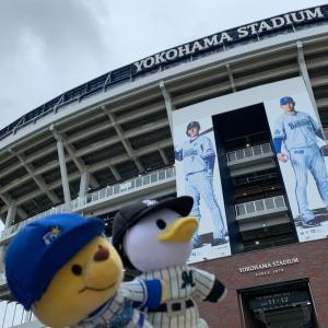 ぬいもーずと一緒にプロ野球を観に行ってきました!!