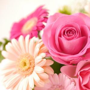 11月より同時間のレッスンの定員を2名様に♪ぜひお友達、お母様とお花に癒されてくださいね♡