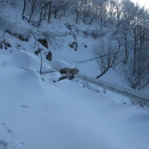 2011年1月の大峰山プチ遭難記録。