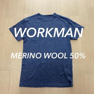 【ワークマン】メリノウール50%半袖Tシャツがめっちゃいい。
