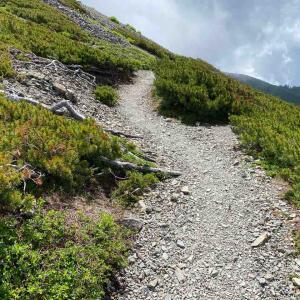 日本の登山道はトレイルランニングの「トレイル」とは違うと思った。