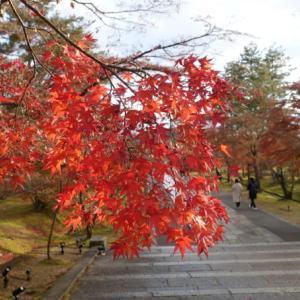 ちょっと京都行ってきました!④