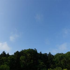 56日目 礼文島でここからの景色が一番好きでした