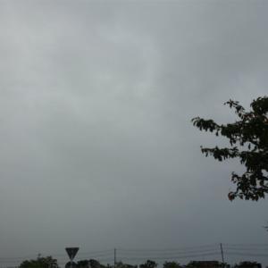 110日目 結局雨は夜までずっと降っていました