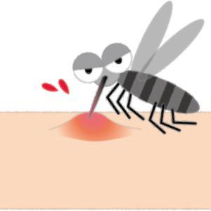 蚊「すみません…子供産みたいんです。ちょっとだけ血吸わせてください」