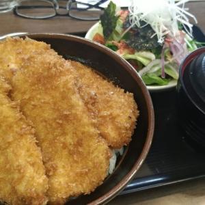 日本一周50日目 新潟 寺泊魚の市場通りで朝ごはん ご当地めしタレかつ丼
