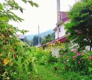 北海道カブ旅8日目~忘れられた街、廃墟の街。