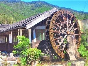 四国歩き遍路2巡目(第一部)15日目~墜落!!