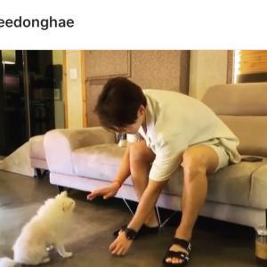わんちゃんとおやつTime✧‧˚ Donghae IG~☆