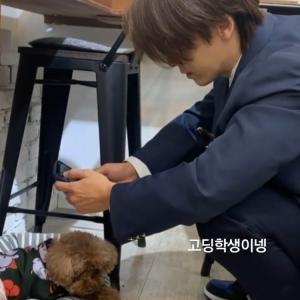 わんこがわんこを撮る♡ Donghae IG story~☆