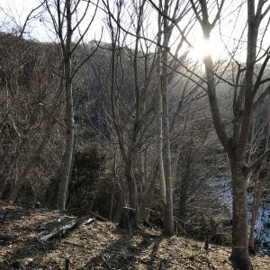銃猟6回目 鹿を追いかけ入山中に巻き狩りに遭遇?