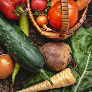 野菜を作るのにひそかに役立っています。